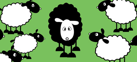 BLACK SHEEP V