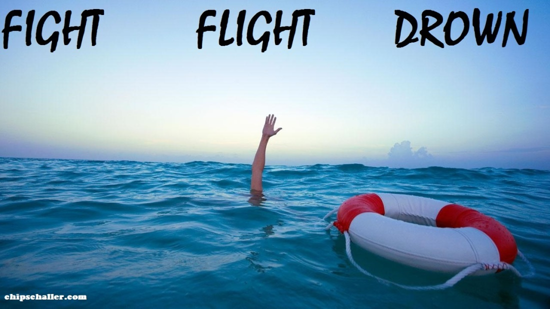 FIGHT FLIGHT DROWN MEME